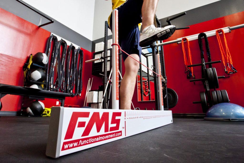 FMSはどこまで役立つのか